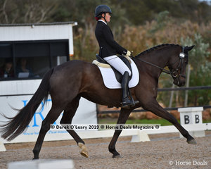 """Royal Diamond Jubilee"" ridden by Jacinta Abernethy placed 2nd in the Elementary Championship"