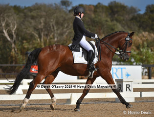 """""""Aristede"""" ridden by Lindsey Ware in the Intermediate II, placed  2nd in the Big Tour Championship"""