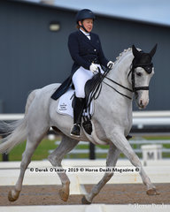 """""""Cil Dara Gandalf"""" ridden by Louise Curran in the Grand Prix, placed 3rd in the Big Tour Championship"""