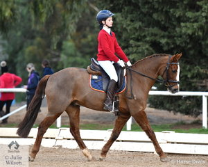 Emma Hercules representing  Toorak College took overall second place in the Preliminary Primary Championship riding 'Treasured Nadal'.