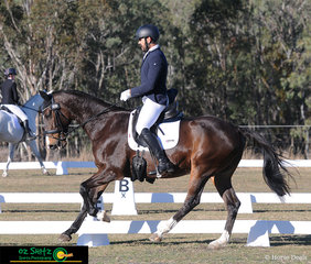 Belcam Reef with Luke Harmer on board present a extended canter in their One Star dressage test at the Warwick Horse Trials.