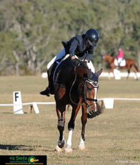 The beautiful bay X Factor receives praise from rider Grace Anthony after their Junior EvA95 dressage test.