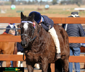 Cute and cuddly with his pony Blackjack was Cooper Morgan after completing the bareback under 7 years gymkhana at Interschool Extravagana 2019.