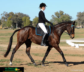 Preparing to travel down the centre line of her Combined Training dressage test was Lauren Jones with her mount Brandy Time in the Secondary section of the class at the Interschool Horse Extravaganza.
