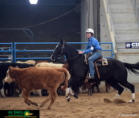 Mr Tom Wilson and his horse Playmore Rock N Roll 1267 gallop after the beast in the Senior Youth Cutting. Tom went on to win the champion and fourth place in the competition with his two horses.