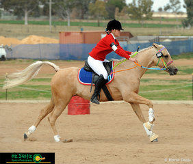 Racing against the clock was Rubie Fitzpatrick from Arndell Anglican College and her 10 year old Australian Stock Horse cross Arabian pony Marbelyn Park Romantic Illusion.