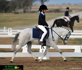 Chrysler Park Pixie tracking up nicely in the Primary Perlim with rider Maddison Ball staying focused with every stride.
