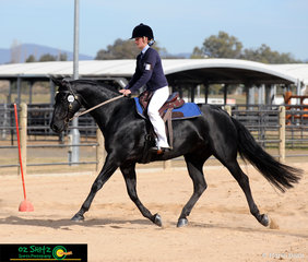Showing nice movement Wundurra Impact is enjoying his time trial course with rider Tahnee Sullivan in the Working Horse Challenge.
