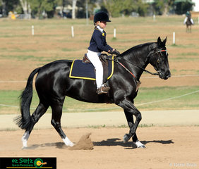 Competing in the Working phase of the Working Horse Challenge was Georgia Maben in the under 9 age group on her horse Silverthorn Oaks Chandelier..