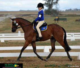 Exhibiting keen determination in the Primary Preliminary class was Sophie Ralph from Boambee Public School and her pony Tremayne Royal Exhibit.