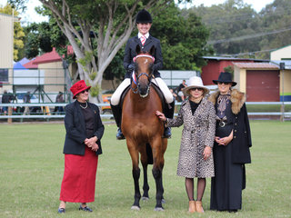 Supreme Hack  of the show was KS Bellevue exhibited by Kim Taunton pictured with judges Teena Crutchley, Jo Fraser and Alexia Fraser
