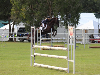 Showjumping was well supported at this years show
