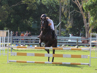The show jumping is always a crowd pleaser