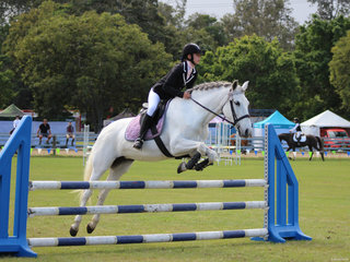 clear in the showjumping