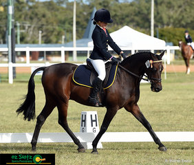 A beautiful trot down the longside of her dressage arena for her Primary Preliminary Test 1A was Mikayla Symonds on Bevenlee Astronomer for West Moreton Anglican College.