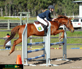 Billabong Bluey, also affectionately known as Billy, takes rider Jilly Weir around the 90cm AM5 Show Jumping track on the second day of the QLD Interschool State Championships.