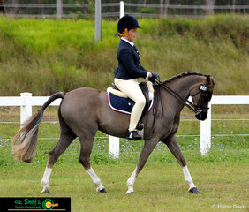 Beautiful trot work in the Intermediate Show Hunter was shown from Sophie Brennan in Grade 8, from Scots PGC College in Warwick on Antrim Royale.