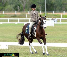 Looking flash in the Primary Show Hunter was Isabella Anderson and the appropriately named Dunelm Fashion Star on the third day of the Queensland Interschool State Championships.