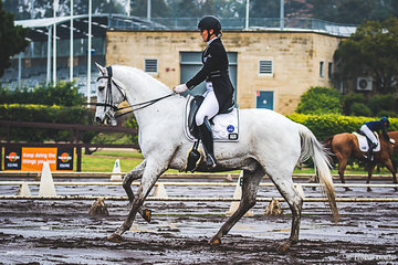 Nicole Berry (SA) and Euroz Jinks scoring 65.098% in FEI Young Rider Individual test to place 5th overall in the FEI Young Rider Championship.  Nicole had a great weekend also taking out the Novice Championship on  Ponderosa Stud Royal Finale