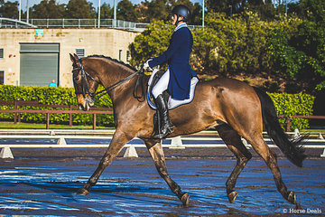 William David and Grand Sam (Sam) from Berrima NSW in the Advanced 5B.  William is also an eventer currently going around at EVA95. His ambition is to ride Grand Prix and is currently on the NSW young rider squad