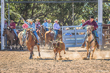 Brother and sister combination from Charters Towers, Bridie and Liam Davidson in the team roping round 3 clocked up a smashing time of 8.085 seconds.