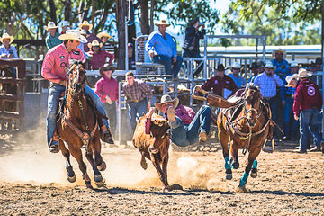 """The """"Man"""", Jock Bone-Langdon from Singleton NSW, captain of NSW in the State of Origin Challenge team and currently national leader for steer wrestling kicked another goal today with a aggregate score of 11.67 to take ouyt the steer wrestling championship for the event"""