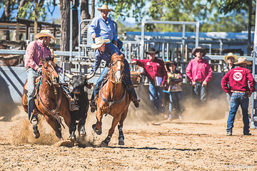 Tracy Martin from Townsville clocked up a winning time in the steer undecorating of 2.31 seconds in round 3 with Heath Nicholls hazing