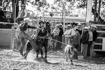Heath Nicolls, stock and station agent from Scone NSW in Round 1 of the rope and tie clocking a time of 12.65 seconds