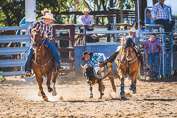 Cody Schaefer from Charters Towers successful in round one of the Steer Wrestling bringing his steer down in 5.07 seconds