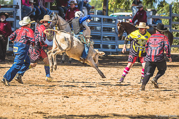 Little Josh Snell closely supported by the protection athletes in the  8 to under 11 Steer ride.  Josh earned himself a score of 65 for his efforts