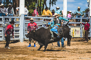 Michael Smith from Townsville  on Booty Call had a great ride in round 2 of the bull ride with the judges awarding him 82.4