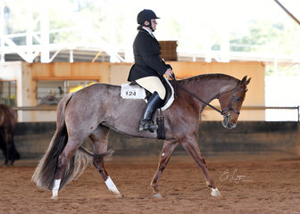 A League Of Her Roan ridden by Tammy Rogers in Amatuer Hunt Seat Equitation