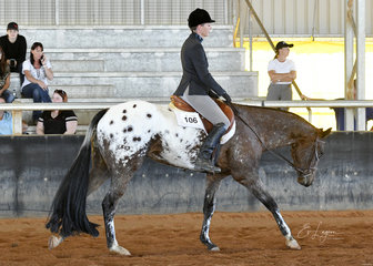 Arnys Blazin Hot Zipper ridden by Amy O'Connell, in Hunter Under Saddle.