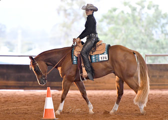 CP Im All Fired Up ridden by Phoebe Caruso in Novice Amateur Western Horsemanship.