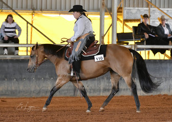 I'm O So Genetically Sleek ridden by Catherine Blair in Amateur Ranch Riding.