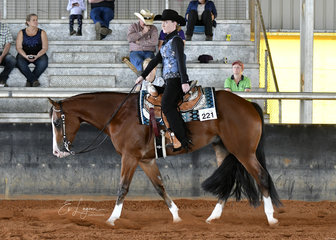 Hez Kashin The Loot ridden by Kate Read in the Amateur Junior Horse Western Pleasure.