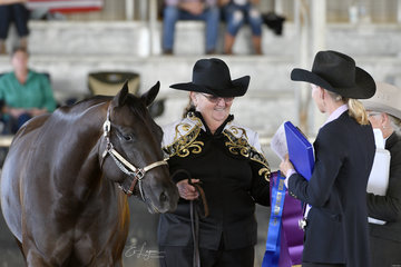 Maxine Williams showing Siann Obsessed By Ebony in the Appaloosa filly classes