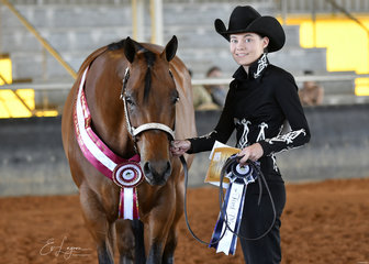 Youth Halter Gelding champion Sworn To Secrecy with Peta Hicks.