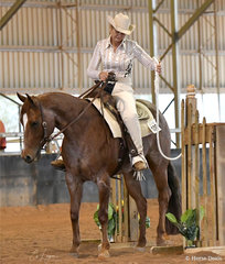 HPH Oaks Category Five and Milissa Payne competing in the Junior Horse Trail