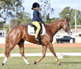 Stetsin ridden by Charley Lalor in the Youth Dressage Preliminary 1A