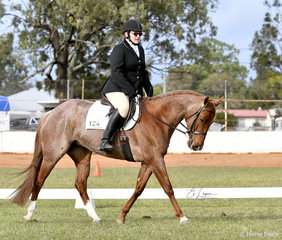 Tammy Rogers riding A League Of Her Roan in the Amateur Dressage Prelimninary 1B