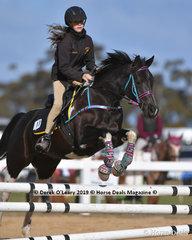 "Stephanie Greig in the Pony Club D Grade 2 phase riding ""Little Ripper"" representing Gisborne Pony Club"