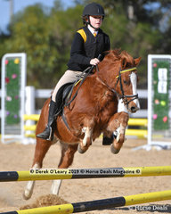 """Alice Summers and """"Monty"""" representing Gisborne Pony Club in the Pony Club E Grade Two Phase"""