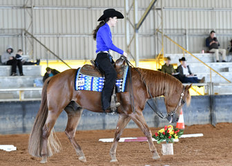 Jesse Fyfe-Farrell and RJF Blue Breeze in the Amateur Trail