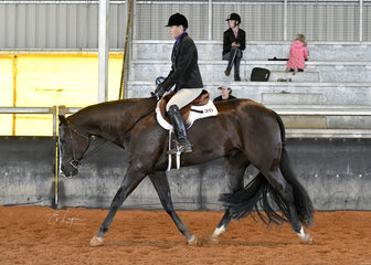 Lopes N Dreams with Pam Jones riding to a win in the Select Amateur Hunter Under Saddle