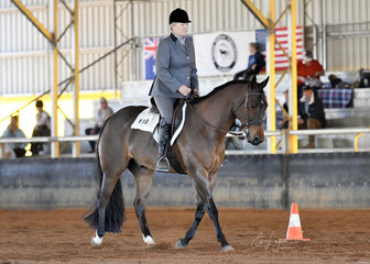 No Doubt About It ridden by Evelyn Hamilton in the Select Amateur Hunt Seat Equitation.