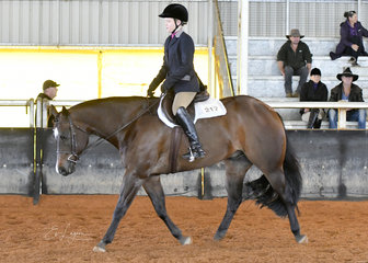 Sienna Humphries, on the way to a win on All Of A Sudden in Youth 12-14 Years Hunter Under Saddle