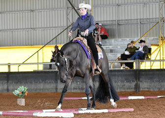 Somethinelsetodreamabout with Holly Wilkie in the 3Year Old Trail