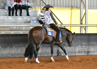 No Doubt About Him ridden by Carolyn Johnson in the 3 year Old Western Pleasure