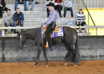 SRG Back To The Future with Travis Humphries in the 3 Year Old Western Pleasure